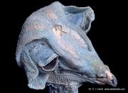 corrosion cast barn owl vasculature anatomy