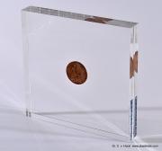 coin_embedding